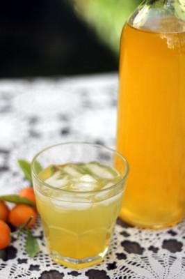 Cumquat cordial